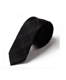 100%涤纶领带-wsd003
