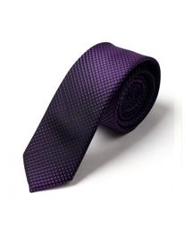 100%涤纶领带-wsd007