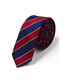 100%涤纶领带-wsd009
