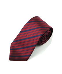 100%涤纶领带-wsd0014